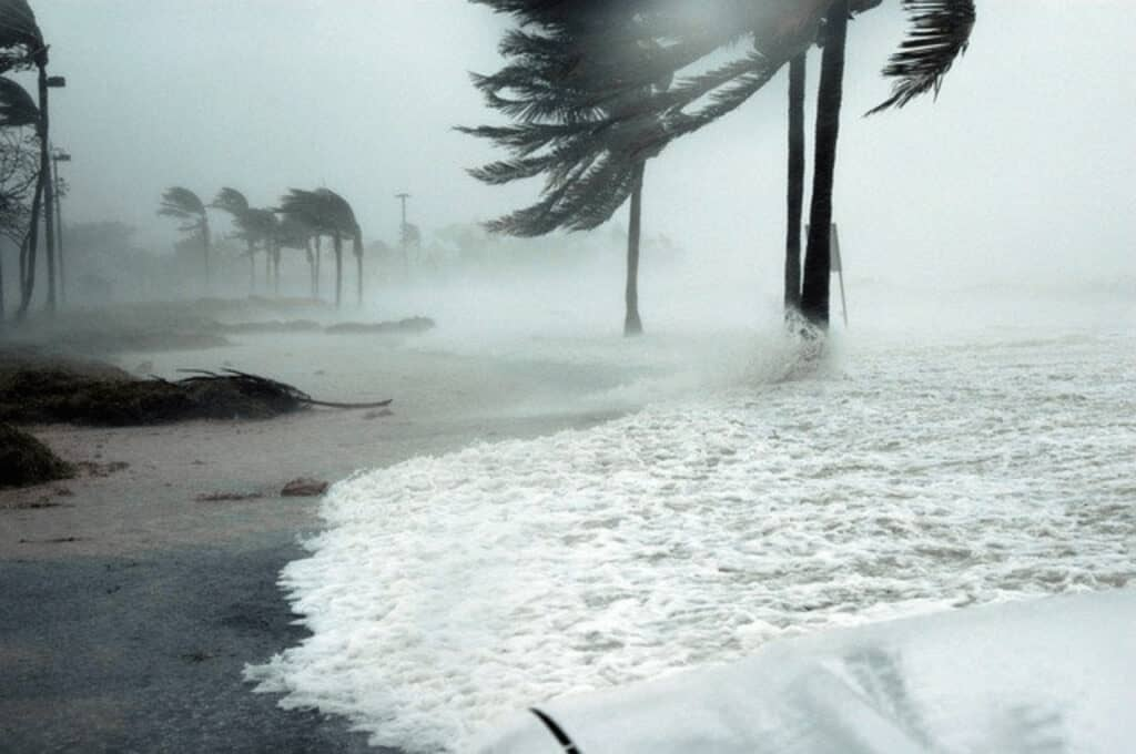 A storm on a beach with palm trees